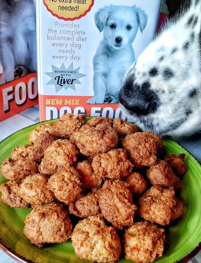 Biscotti per cani Golosi? – Pepite al cocco e formaggio